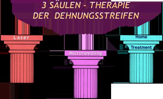 3 Saeulen der Therapie von Schwangerschaftsstreifen und Dehnungsstreifen Praxis Juri Kirsten in Berlin