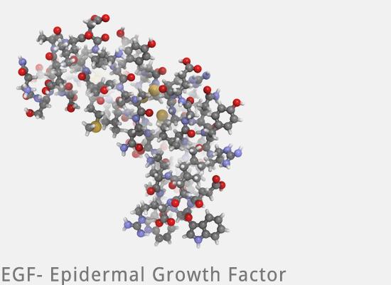 Eigenbluttherapie - Growth Factor EGF PRP bei Mesowelt