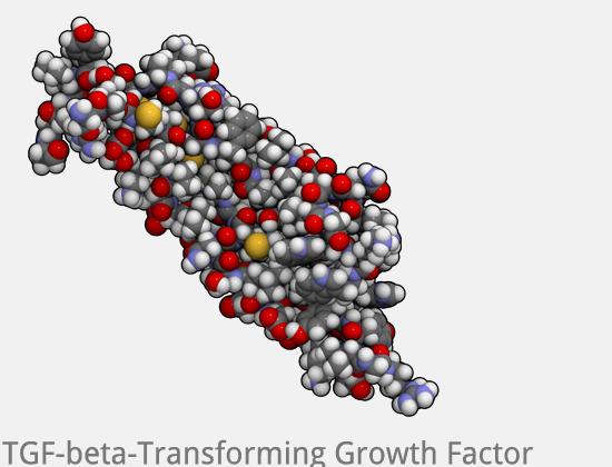 Vampir Lifting - Growth Factor TGF beta PRP bei Mesowelt