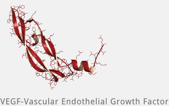 Eigenbluttherapie - Growth Factor VEGF PRP bei Mesowelt