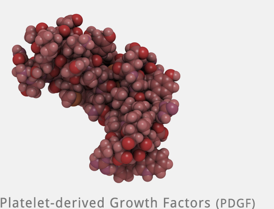 Vampir Lifting - Growth Factors PDGF PRP bei Mesowelt