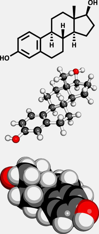 Abbildung Hormon Estradiol Haut und Hormone Praxis Juri Kirsten in Berlin