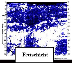 Ultraschallfaufnahme einer Fettschichtmessung-min