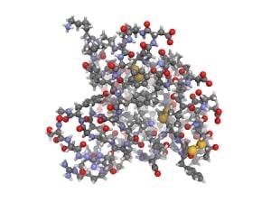 IGF-1 инсулиноподобный фактор роста